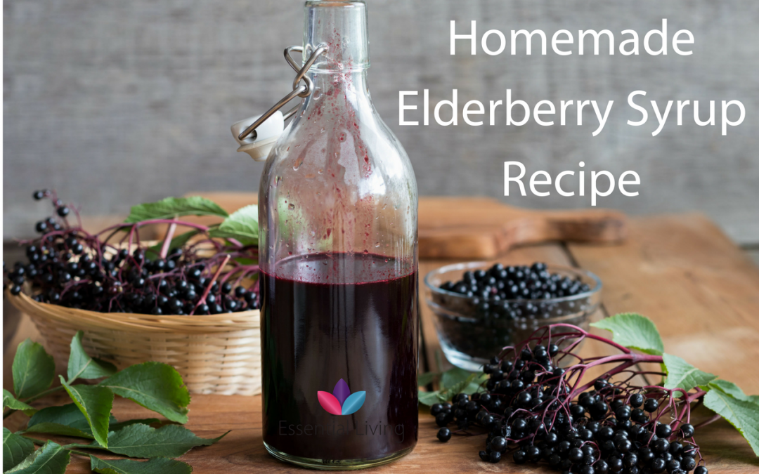 How to Make Elderberry Syrup – A Simple Recipe